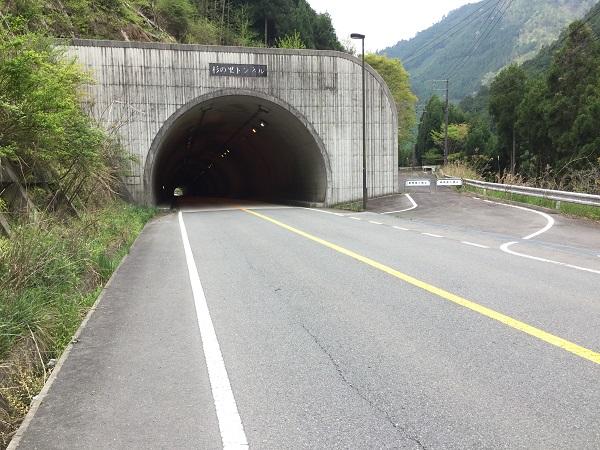 杉の里トンネル。右側の旧道からも向こう側へ出られる。