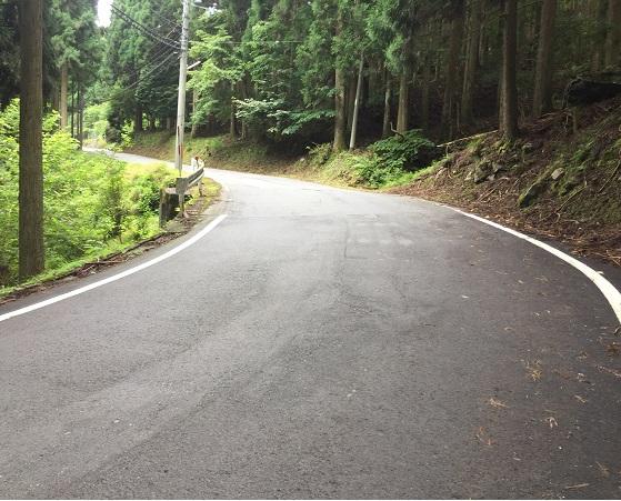 序盤の山道区間