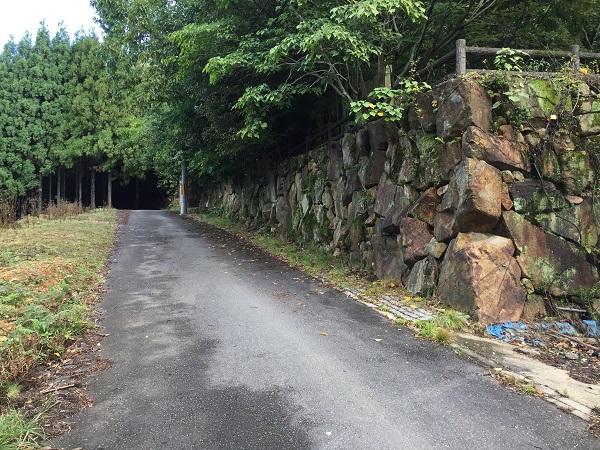 石垣と廃墟