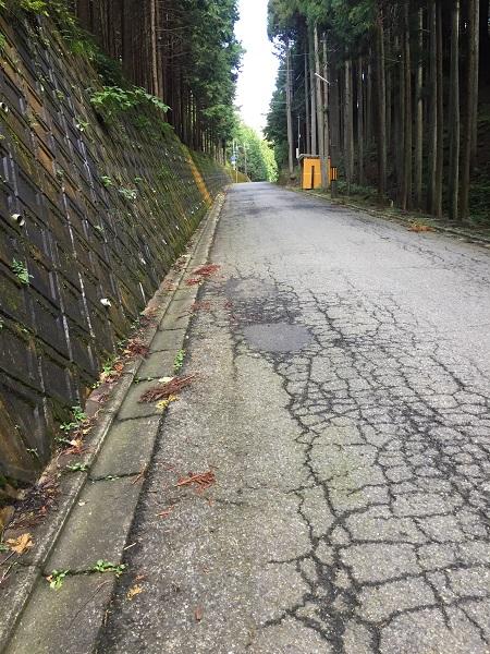 前ヶ畑峠直前の直線