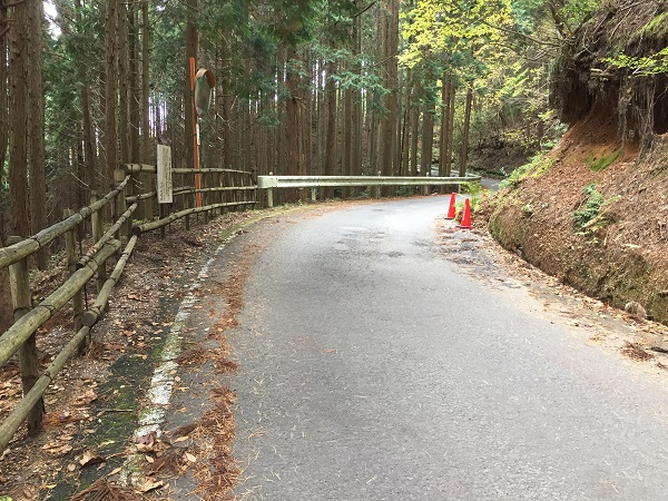 急勾配後はゆるやかに落ち着く 木の柵が見えたら峠までもう少し