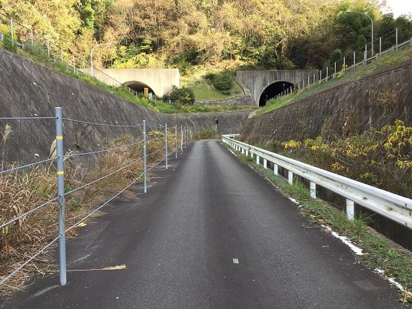 京都縦貫自動車道の間を進む