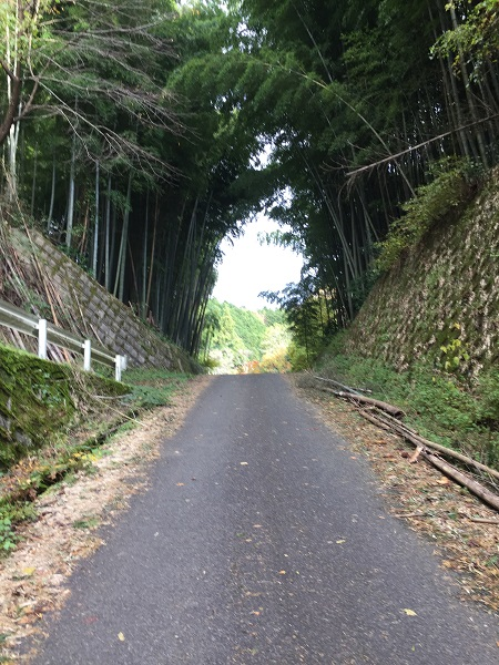切り通しの老ノ坂峠