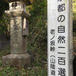 老ノ坂峠(おいのさかとうげ)