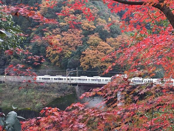 2018京都の紅葉を自転車で楽しむライドEpisode2